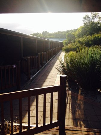Kangaroo Island Wilderness Retreat: View from cabin 14 terace