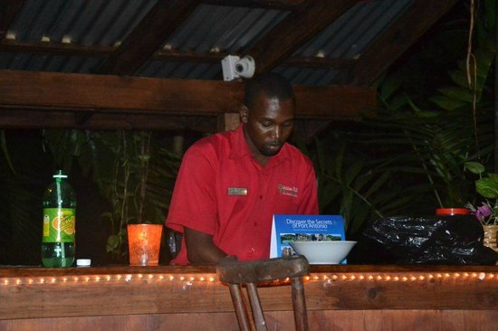 Goblin Hill Villas at San San : O'Neill preparing my pina colada at the tree bar