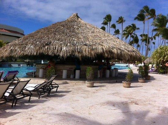 Paradisus Palma Real Golf & Spa Resort : Pool Bar