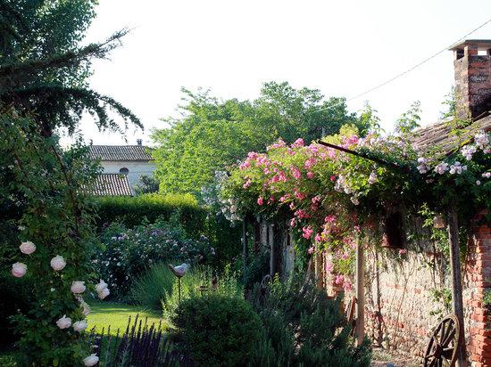 B&B La Vigna : Il giardino