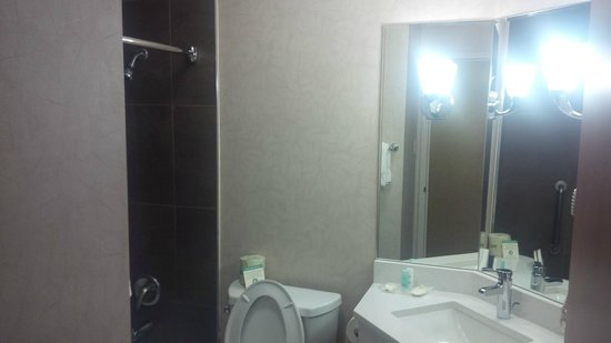 Comfort Inn Monticello : The Bathroom