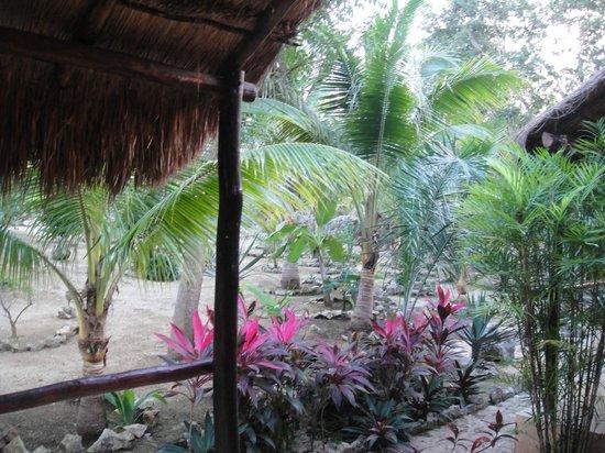 Itour Akumal Villas Tortugas: Vista desde nuestra habitación