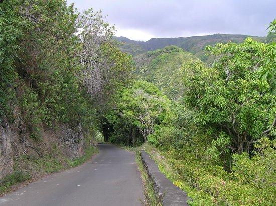 Ekena: cycling south of Hana
