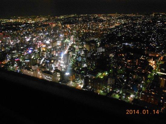 Yokohama Royal Park Hotel: 夜景