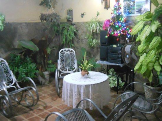 Casa Mario y Damaris : The patio