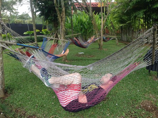 Arenal Backpackers Resort: Chilling en la hamaca paraguaya