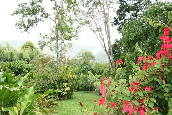 The Lodge and Spa at Pico Bonito : The Gardens at the Lodge