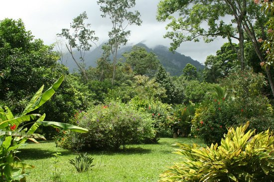The Lodge at Pico Bonito: The gardens with mountains behind