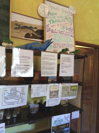 Iguana Azul: Message Boards