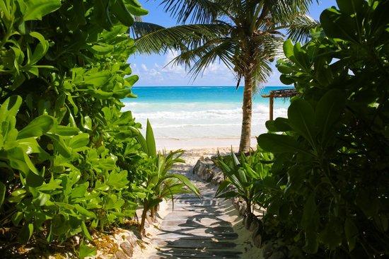 Casa de las Olas: Path to the beach