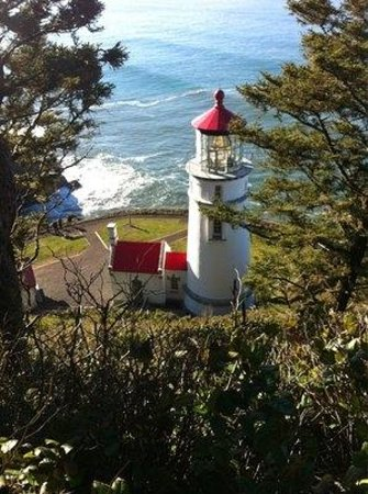 Heceta Head Lighthouse Bed and Breakfast : Lighthouse from a trail above