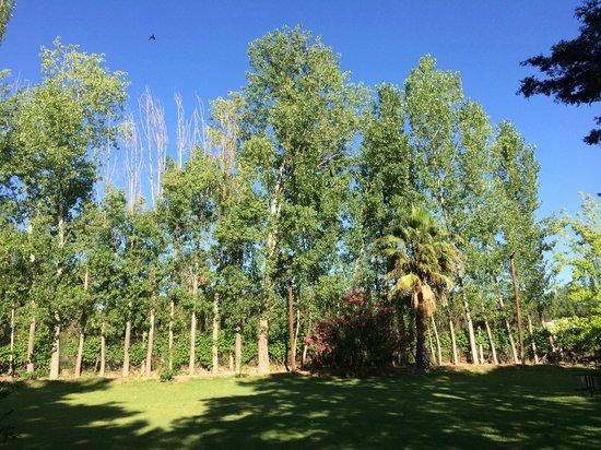 Grounds at Lujan de Cuyo B&B