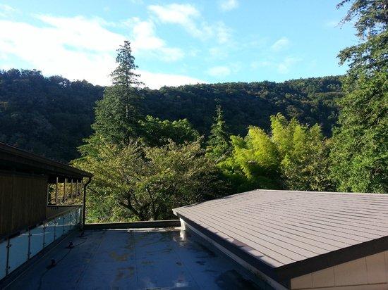 Tonosawa Ichinoyu Shinkan : View from room
