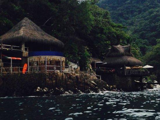 Ocean Grill Restaurant & Beach Club: view