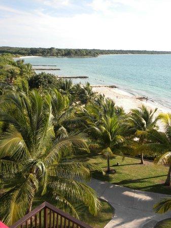 Royal Decameron Barú: Zona de playa/pileta