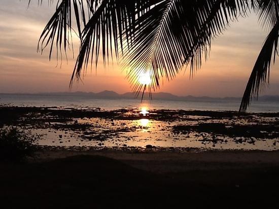 Pine Bungalow : beautiful sunset