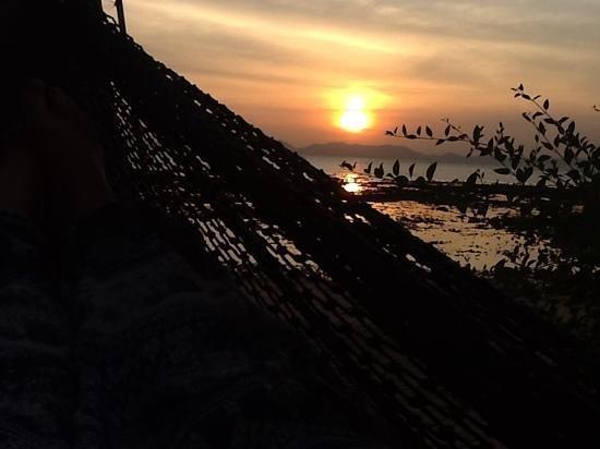 Pine Bungalow : sunset