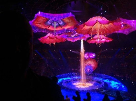 Le Reve - The Dream: Final