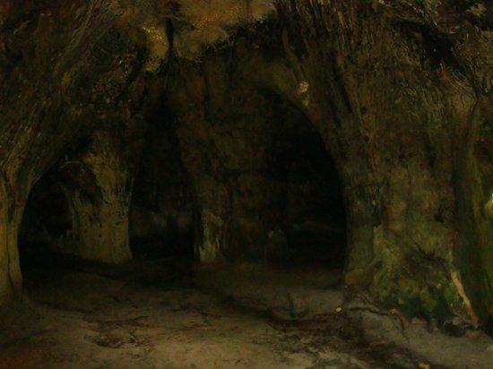 Cachoeira de Iracema : gruta