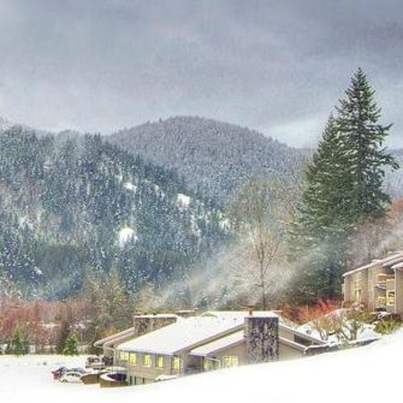Mt. Hood Resort Condominiums : Wilderness views in the heart of a 27-hole golfcourse. Awesome!!