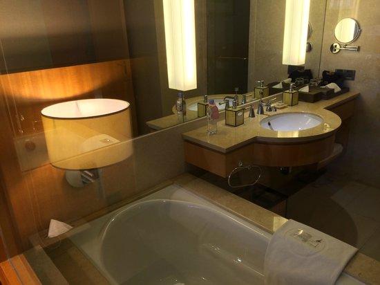 Windsor Park Hotel : Superior Room (Bathroom)