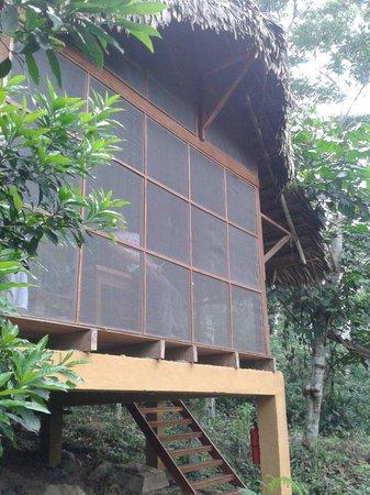 Shimiyacu Amazon Lodge: Cabaña