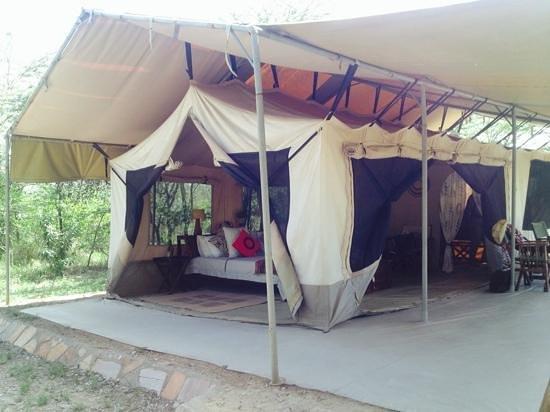 Leleshwa Camp : Our accomodations at Leleshwa