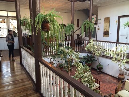 Hostal Macondo: patio central