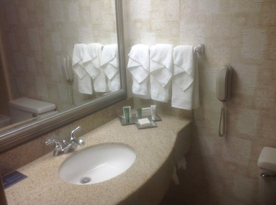 Hilton Knoxville Airport : Vanity area in bathroom