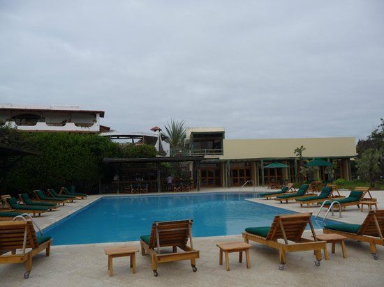 Finch Bay Eco Hotel : The Pool Area