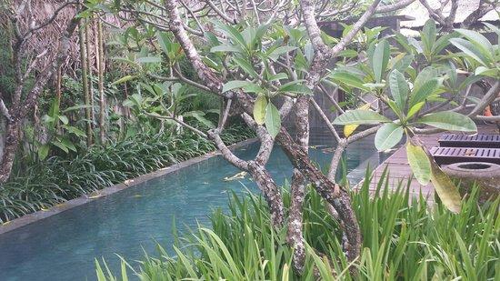 Kayumanis Nusa Dua Private Villa & Spa: PlNANGヴィラ