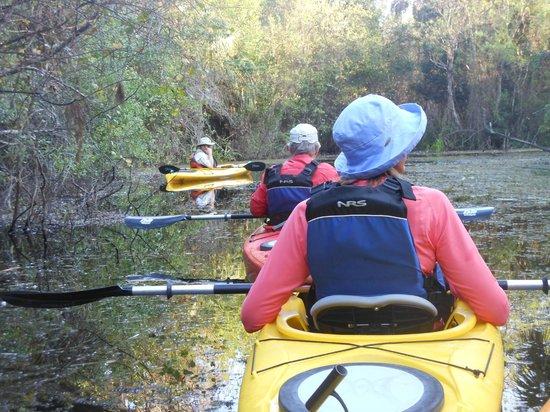 Everglades Rentals & Eco Adventures: Paddling