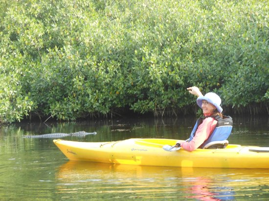 Everglades Rentals & Eco Adventures: He's right there