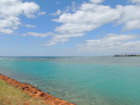 Ala Moana Beach Park: Breathtakingly beautiful juxtaposition of colors