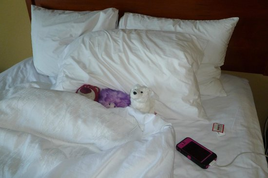 Hilton Garden Inn Orlando International Drive North: my Disney stuffies even needed a nap in the super comfortable bed