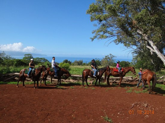 Happy Trails Hawaii: Mark took this photo at the lookout