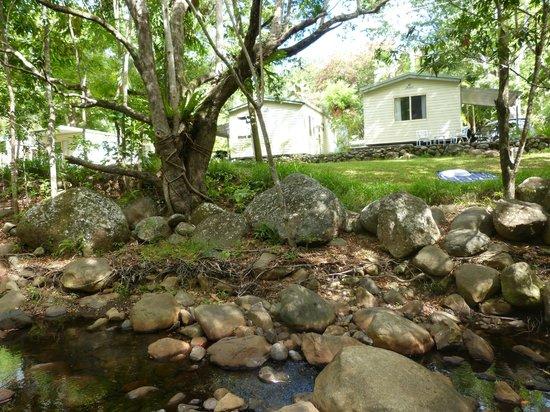 Mt Warning Rainforest Park: Riverside Cabins