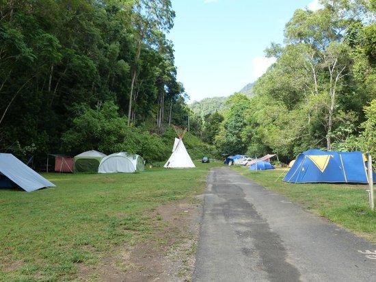 Mt Warning Rainforest Park: Wilderness Area
