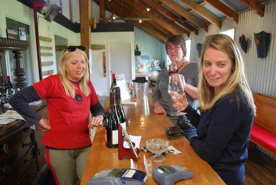 Otago Tours - Day Tours: Wine tasting in Central Otago