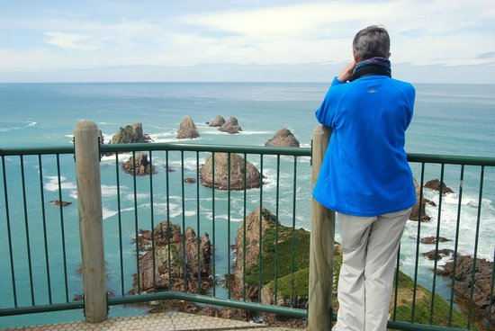 Otago Tours - Day Tours: Sightseeing in The Catlins