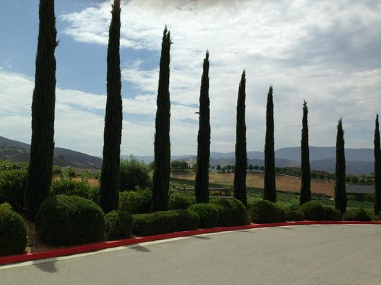 Sunrider Jeep and Wine Tours of Temecula: road to winery