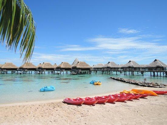 Hilton Moorea Lagoon Resort & Spa : View from the beach