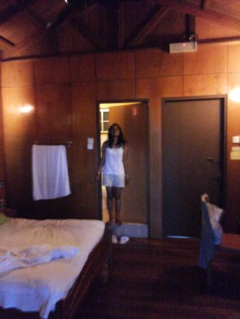 Sepilok Forest Edge Resort: Room