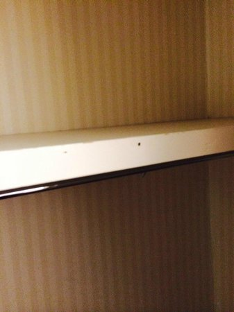 University Place Hotel and Conference Center: closet