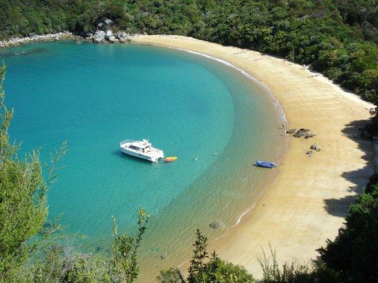 Abel Tasman Charters - Day Tours