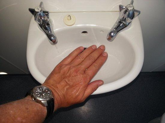 Dehra Doon Chalets: Waschbecken Bad
