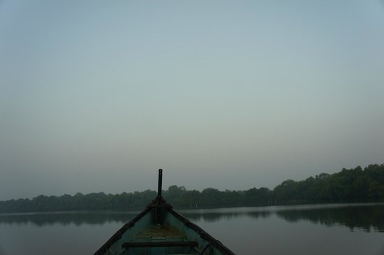 Dr. Salim Ali Bird Sanctuary: A pretty peaceful way to start the day