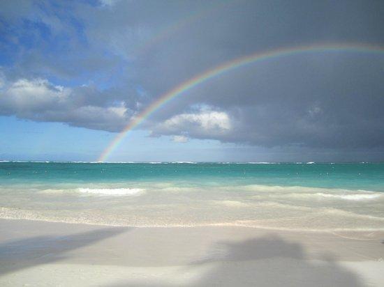 Occidental Grand Punta Cana : plage