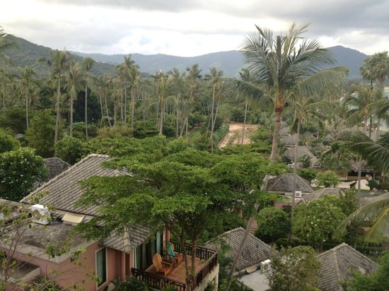 Fair House Villas & Spa : view from room
