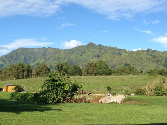 Makaleha Bed and Coffee: View from the patio.  Not too shabby!